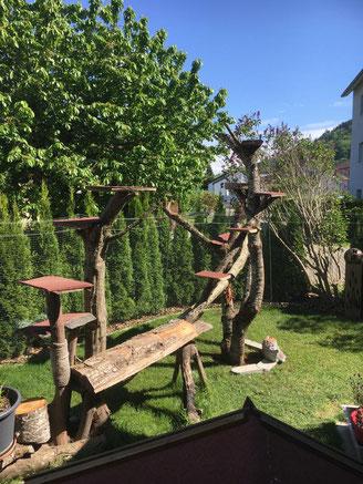 Outdoor Kratzbaum selfmade