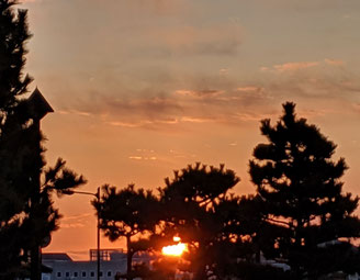 ラジオ体操前の朝陽