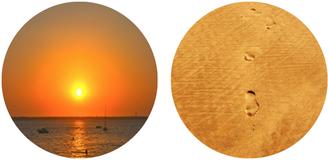 Orange comme le sable sous nos pieds ou le soleil qui nous chauffe et nous apporte la joie.