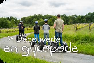 VinoLoire - Vincent Delaby - Excursions privilégiées dans les domaines vignobles du Val de Loire - Expérience en gyropode segway