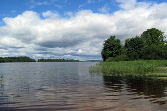 Лужский район, у озера Врёво, д. Конезерье