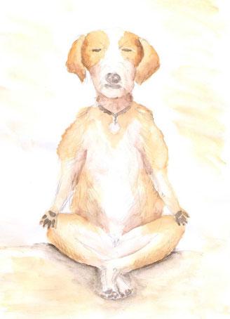 Grußkarte Yoga Hund