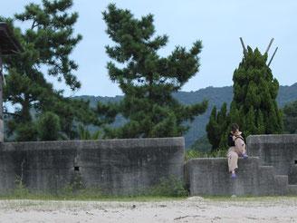 海岸で勉強中(?)のポンちゃん