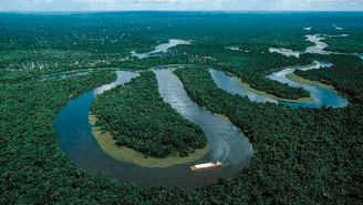 Selva amazónica. Foto: Servindi