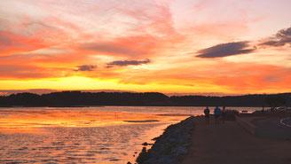 Notre astre du jour se couche sur l'étang de Gruissan
