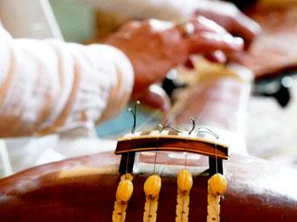 tanpura, Yoga de la Voix, Mantras et Chant Sacré de l'Inde  - www.yogadelavoix.com