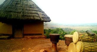 Guinea Village