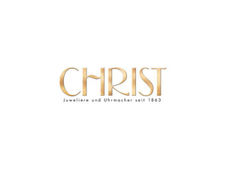 CheckEinfach | Christ Logo