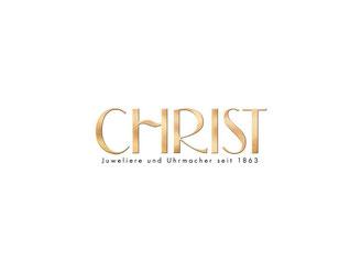 CheckEinfach | Christ Logo