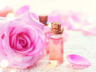 CheckEinfach | Parfum & Kosmetik