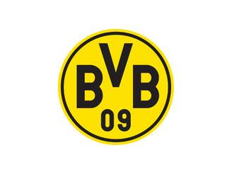 CheckEinfach | BVB Logo