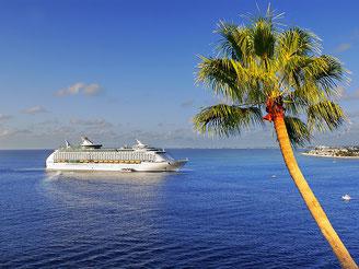 CheckEinfach | TUI Cruises - Mein Schiff