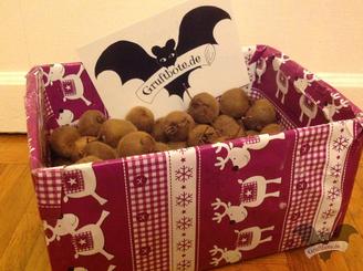 Leckere Kiwis für die Kiwi-Pentagramm-Vanille-Torte à la Gruftbote / Foto: Gothamella