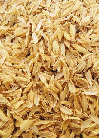 籾殻の写真