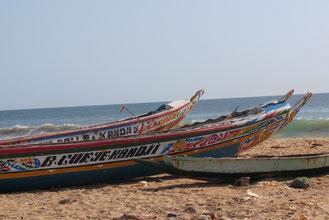 Pirogues de la petite côte - Toubab Diallaw