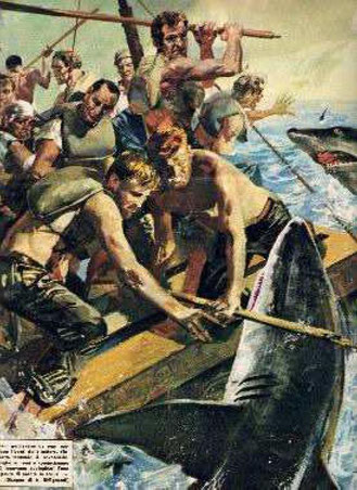 Dalla Domenica del Corriere del 16 dicembre 1962 I superstiti della Nova Scotia lottano contro gli squali