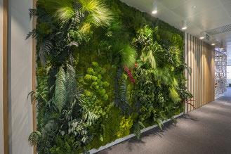 Jardines verticales de pie sin apoyo con movilidad.  Divisores de espacio en la gran sala de un hostel llena en ambas caras con varias plantas tropicales incluyendo algaonema, cintas y epipremnum