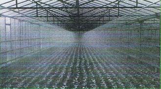 Montage direct sur rampe en acier galvanisé ou en pendulaire sur du polyethylene