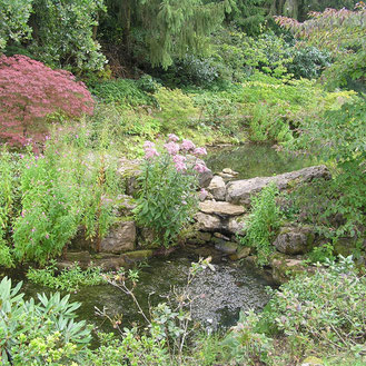 Gartengestaltung, grüne Oase, Erholung, Gartenparadies