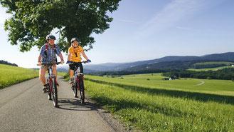 Mountainbiken & Radfahren