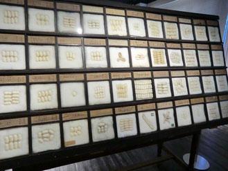 ●繭の標本(国内外で収集されたもので、約100種もある)