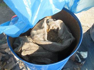 Sterilisierte Späne in Jutesäcken, fertig zum beimpfen