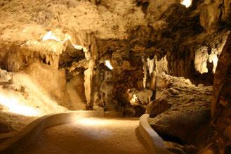 sehenswürdigkeiten-hato-höhle-urlaub-curacao-villa-ferienhaus-pool-karibik