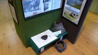 Moorschuhe für Pferde