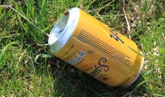 Achtlos weggeworfener Abfall belastet die Umwelt und verschandelt die wunderschöne Natur.