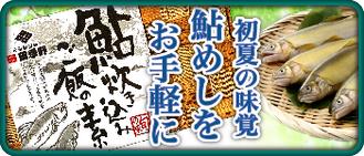 鮎 炊き込みご飯の素(2合用×2)