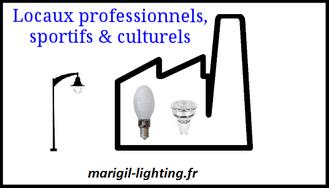ampoules pour les professionnels industrie salle de spéctacle & de sport bureaux