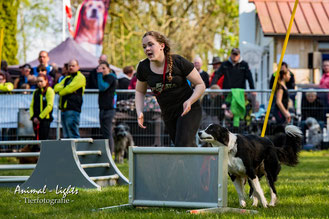 Abby & Bella beim CSC; photocredit Sascha von Rhein (Animal-Lights)