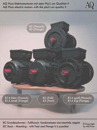 4/8 polige E Motoren Gruppenbild Bauformen Fußmotor Flanschmotoren