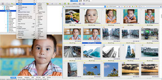 XnViewMP is an image browser and viewer photos organizer