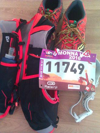 Millau Triathlon Festival de Templiers 2016 - Szoldra Mathieu Damien Fages