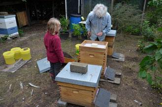 Winterfutter für die Bienenvölker