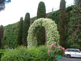 Ватиканские сады, их можно посетить фото