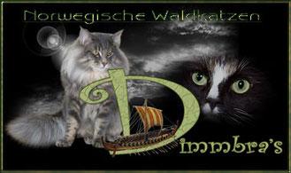 Logo Dimmbra's Norwegische Waldkatzen