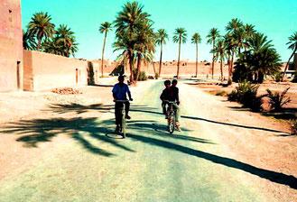 Einfahrt in die Palmen-Oase Erfourd