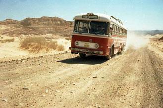 die wenigen Busse machten einen weiten Bogen um mich