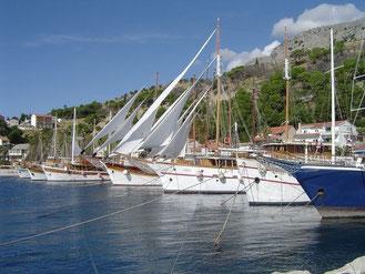 voilier sur la cote dalmate, croatie