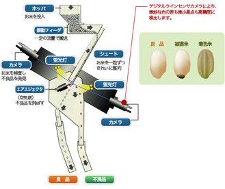玄米色彩選別機にて異物処理