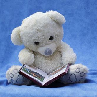 Foto: Teddybär mit Buch