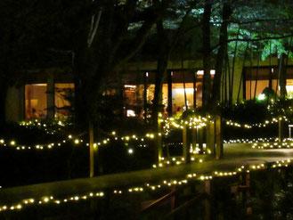 ライトアップされた中庭のウッドデッキ