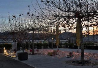 19. Dezember 2015 - Wenn Lichter (statt Schnee) am Boden liegen - ist bald Weihnacht