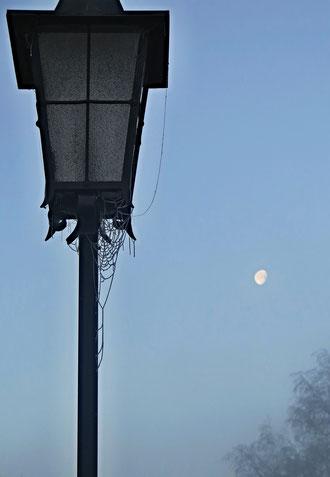 Mond,  Morgen, kalt