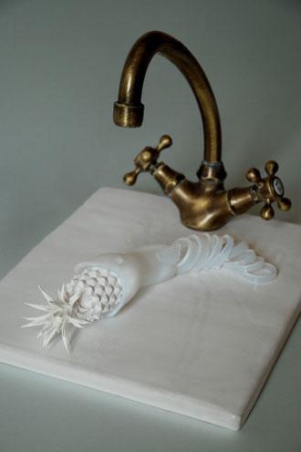 Chap 2 - L'anguille dans le lavabo