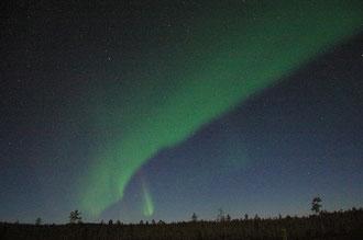 Aurora Borealis, Inari FI, W. Ries