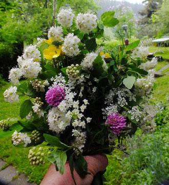 Mai Blumenstrauß