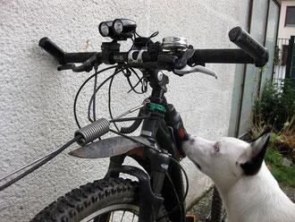 Dogscooter Lenker